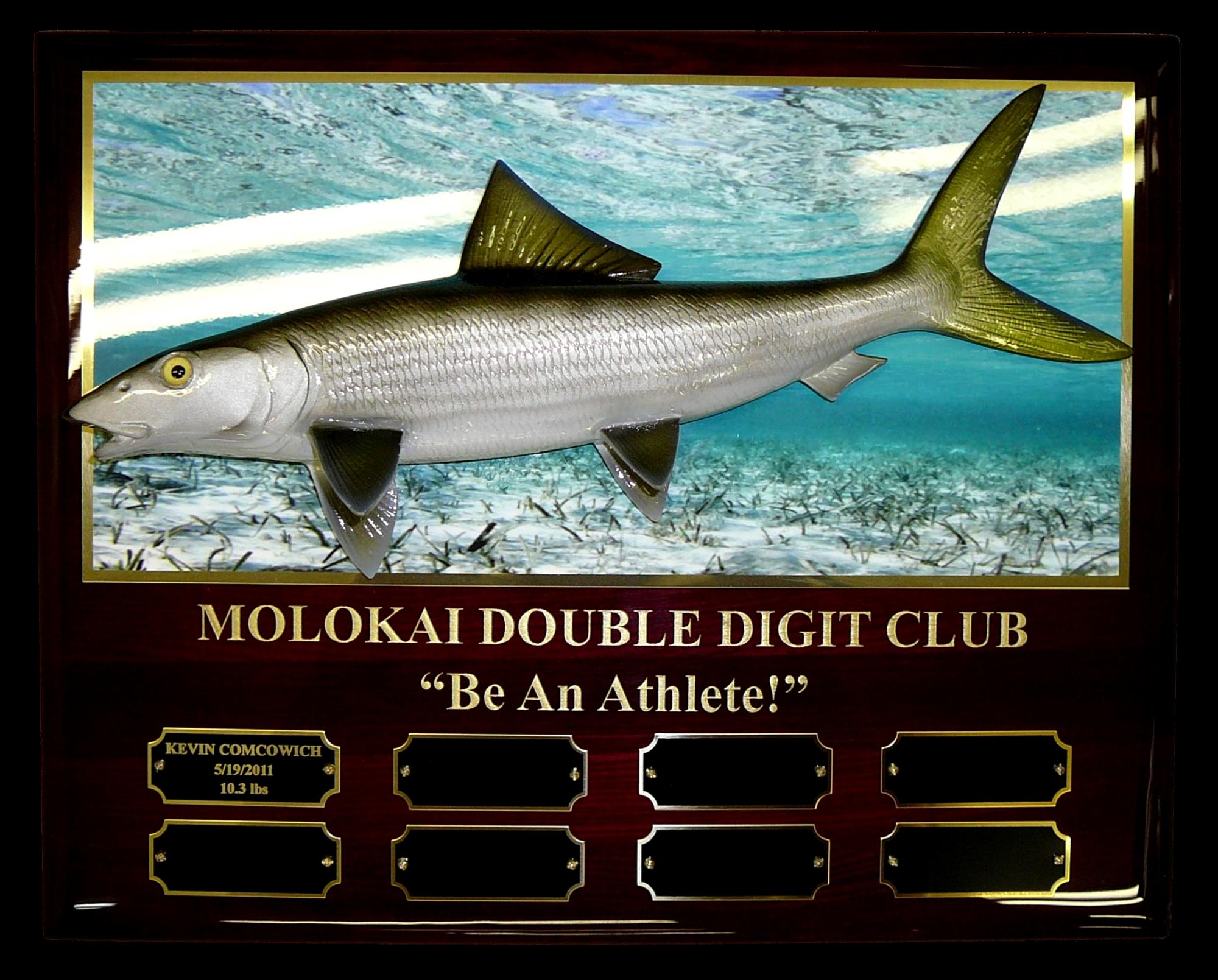 Bonefish_plaque_Perpetual_Photo.jpg