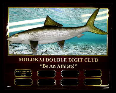 "14"" Bonefish on a Photo Plaque with Gold Laser Engraving"