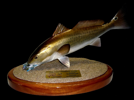 "18"" Redfish Eats a Crab on a Sand Sculpture and Mahogany Base"