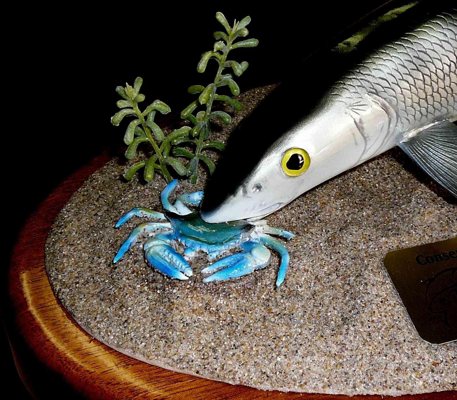 bonefish_trophy_close.jpg